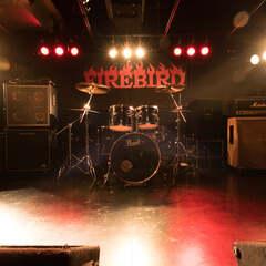 sound bar FIREBIRD画像1