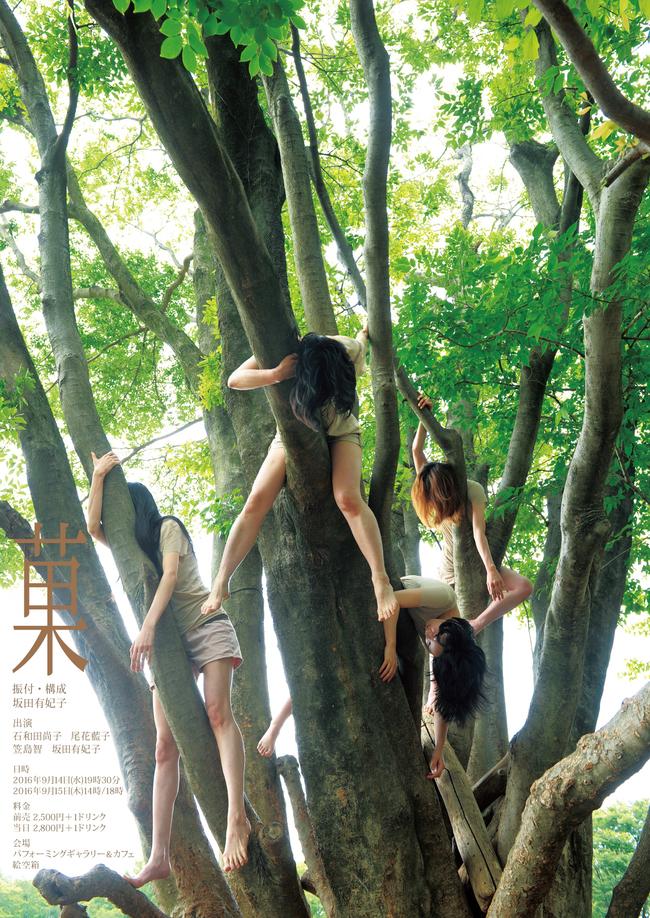 坂田有妃子 ダンス公演「菓」のサムネイル画像1