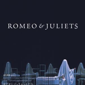 Noism1×SPAC 劇的舞踊 vol.4 「ROMEO & JULIETS」のサムネイル画像1