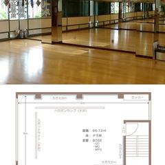 SHIVAベリーダンススタジオ(シヴァベリーダンススタジオ)画像1