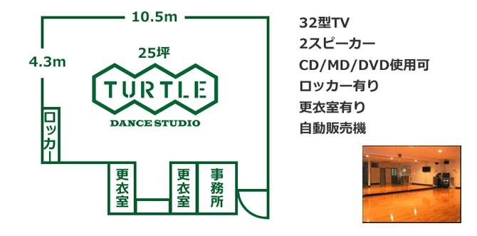 TURTLE画像1